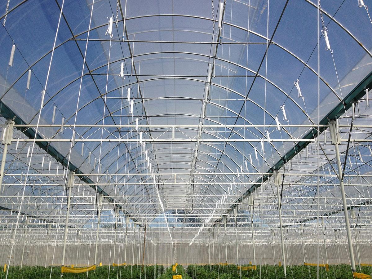 Alma Greenhouse Solutions