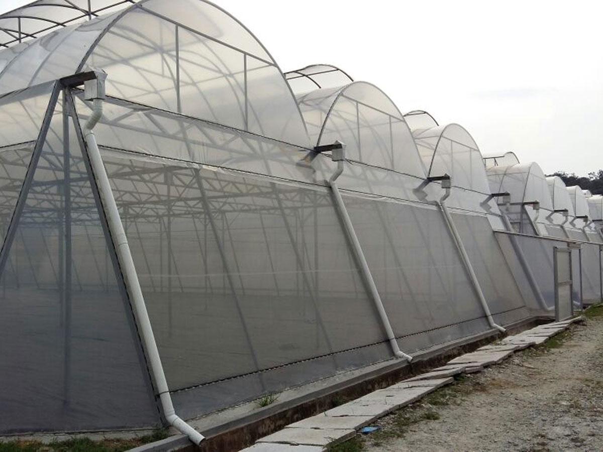 Alma Greenhouse Construction in Asia